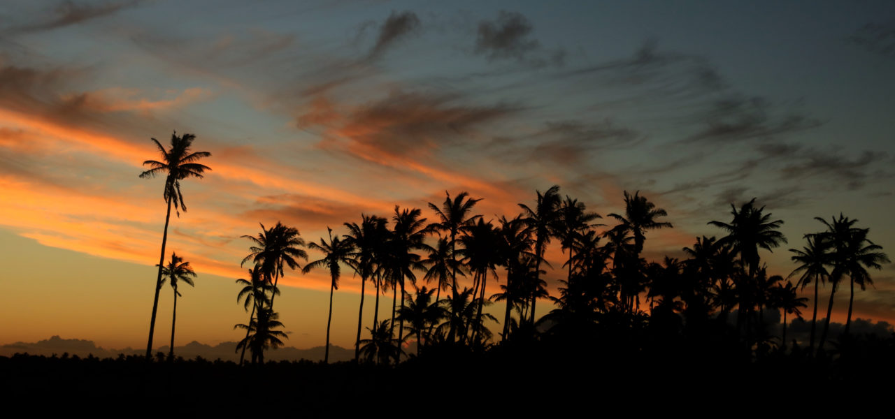 Mozambique by Night