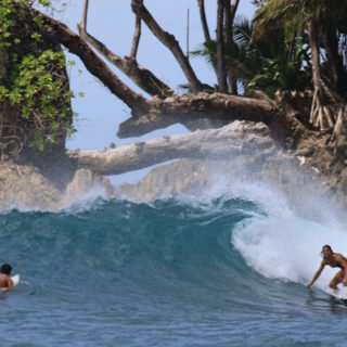 Welle The Shadow Mentawai